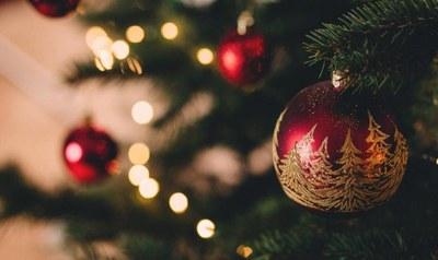 Programa d'activitats desembre - gener