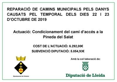 2240 0011 2020 CARTELL_WEB SUBVENCIO DIPUTACIO AD_CAMINS_AIGUATS.jpg